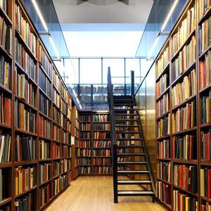 Библиотеки Окуловки
