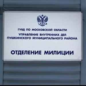 Отделения полиции Окуловки