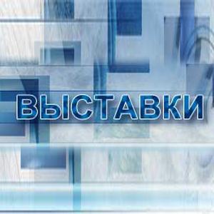 Выставки Окуловки